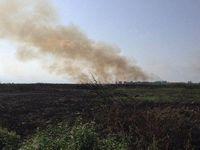 آتش زدن تالاب انزلی برای تصرف اراضی پرارزش