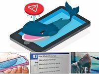 « نهنگ آبی» درفضای ایران شنا میکند؟