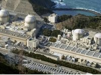 ژاپن با فعالیت یک نیروگاه برق اتمی موافقت کرد