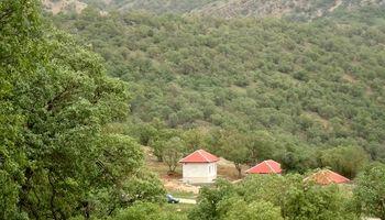 پارک جنگلی یاسوج +عکس