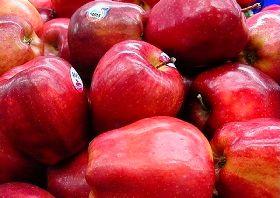 صدور مجوز واردات موز، آناناس و انبه در ازای صادرات سیب درختی