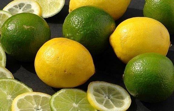 صادرات لیموشیرین و لیموترش ممنوع شد