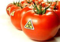 واردات محصولات تراریخته منوط به مجوز وزارت جهاد کشاورزی شد