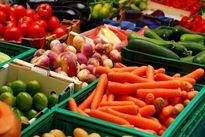 خرید محصولات کشاورزان به کمترین قیمت ممکن