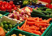 ۱۴.۳ درصد؛ سهم بخش کشاورزی از صادرات