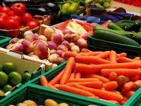 پیش بینی افت تراز تجاری محصولات کشاورزی در ماههای آینده/ مگر دولت به داد برسد!