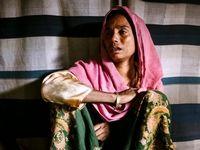 بازماندگان فاجعه روهینگیا +تصاویر