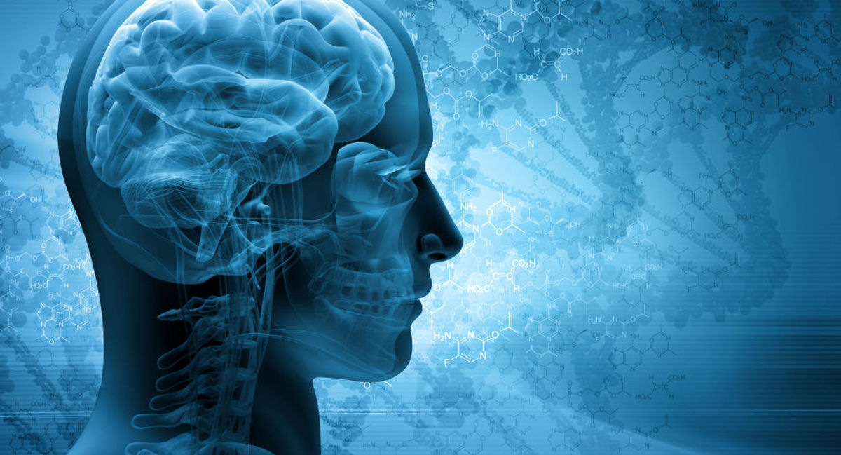 پنج گام موثر برای تقویت حافظه کدام است؟