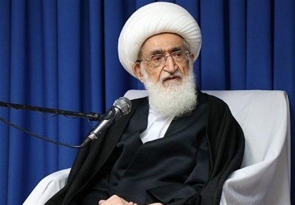آیتالله نوریهمدانی خواستار اختصاص ارز دولتی به زائران اربعین شد