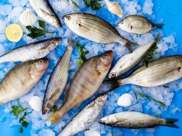 ماهی های حساسیت زا