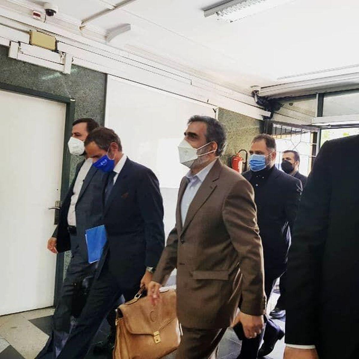 رافائل گروسی با محمد اسلامی دیدار کرد