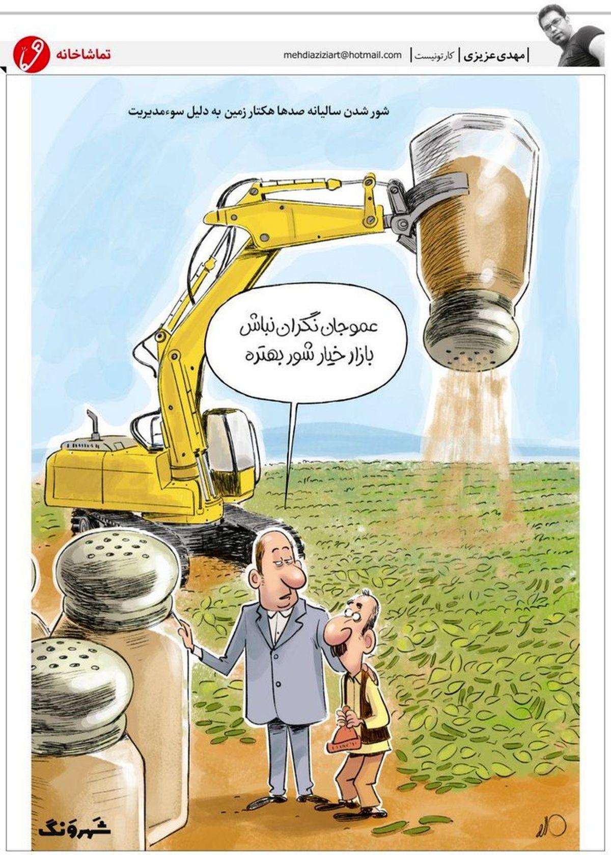 کشت خیارشور هم کلید خورد! (کاریکاتور)