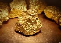 آذربایجان غربی مدفن نیم درصد از طلای جهان است