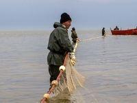 پایان فصل صید ماهی استخوانی دریای خزر +تصاویر