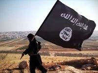جزییات بیشتری از یورش داعش به سویداء
