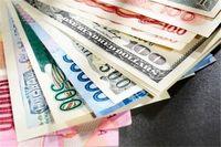 بانک مرکزی تخصیص ارز کالاهای اساسی را به مجلس میفرستد
