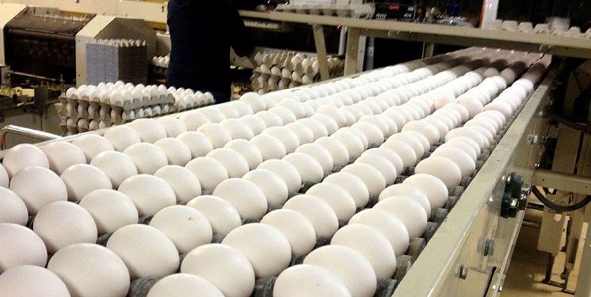 ممنوعیت فروش تخم مرغ فلهای لغو شد