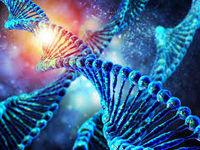 آیا ژن زیبایی وجود دارد؟