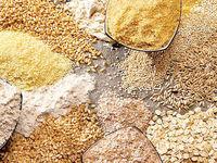 صادرات خوراک دام با نهادههای که ارز دولتی میگیرند!/ سود بیحساب از تفاوت نرخ ارز دولتی و بازار آزاد به جیب عدهای معدود
