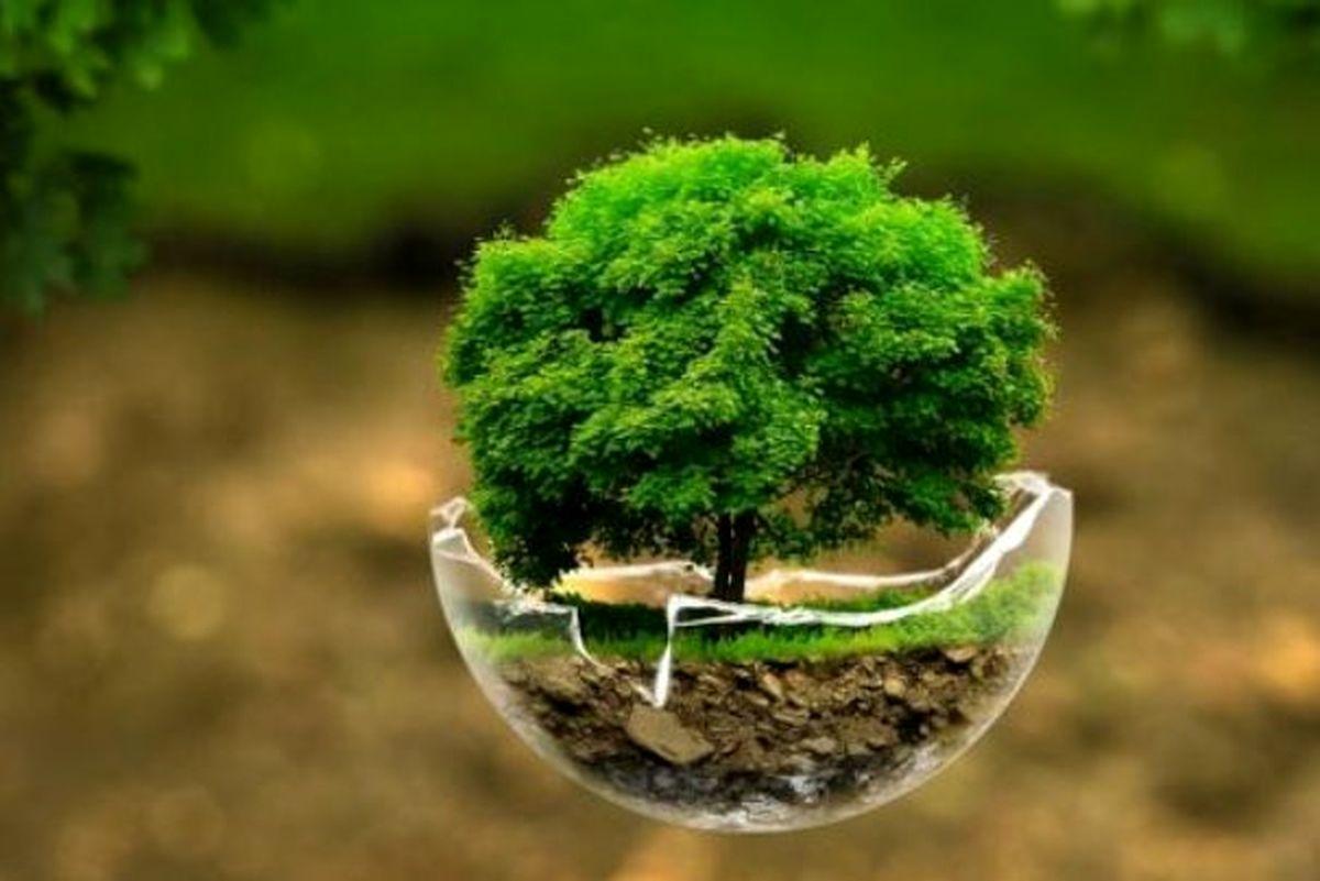 ۲۰۲۰ چه بر سر محیطزیست آمد؟