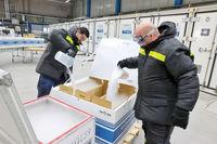 جستوجوی داغ برای یخ خشک