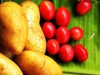 گوجهفرنگی و سیبزمینی ارزان شد/ کاهش قیمت ادامه دارد