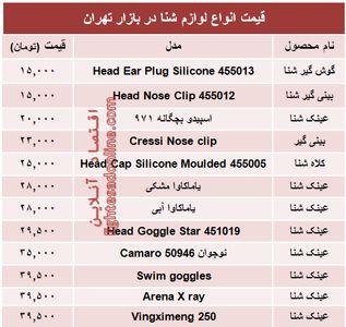 قیمت انواع لوازم شنا در بازار تهران +جدول