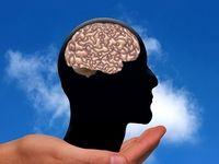 راهکاری ساده برای جلوگیری از آلزایمر