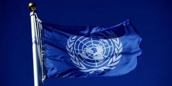 هشدار گزارشگر سازمان ملل به داماد ترامپ