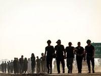 زائران پیاده اربعین در ۱۵۰کیلومتری کربلا +عکس