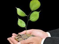 درخت بکارید، ارز دیجیتال برداشت کنید