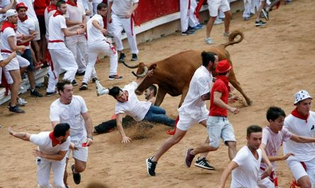فستیوال گاو بازی