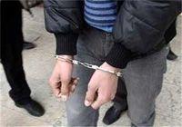 همدستی عروس و خواهر شوهر برای سرقت از خانهها