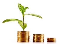 جذابیت سرمایهگذاری در بخش ناملموس