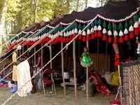جهانگیری از دومین نمایشگاه توانمندی های روستاییان و عشایر بازدید کرد