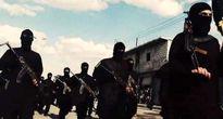 فرار اعضای انگلیسی داعش به ترکیه