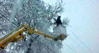 برف سبب قطع برق ۲۱۰ هزار مشترک البرز شد