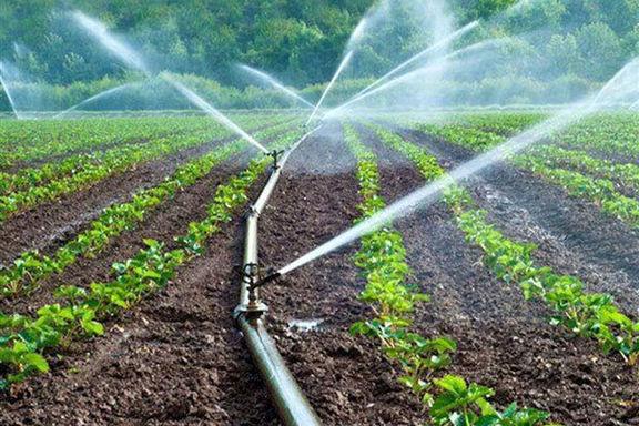 مصرف آب کشاورزی کمتر از ۷۰درصد است