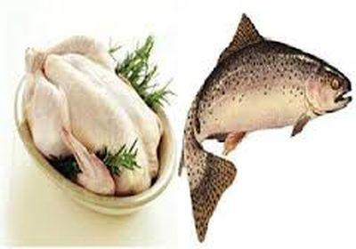 آخرین قیمت مرغ و ماهی در بازار