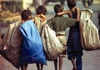 فعالیت ۸۶درصد از کودکان کار برای تامین معاش خانواده است