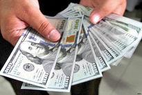 عوامل سقوط قیمت دلار در هفته جاری چیست؟
