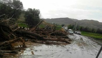 تخلیه سیلاب تا ۱۰روز دیگر از اراضی کشاورزی گلستان