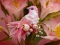 پرواز ققنوسوار پرندگان جواهرنشان +تصاویر