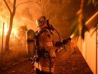 آتشسوزی مهیب در جنوب سیدنی +تصاویر