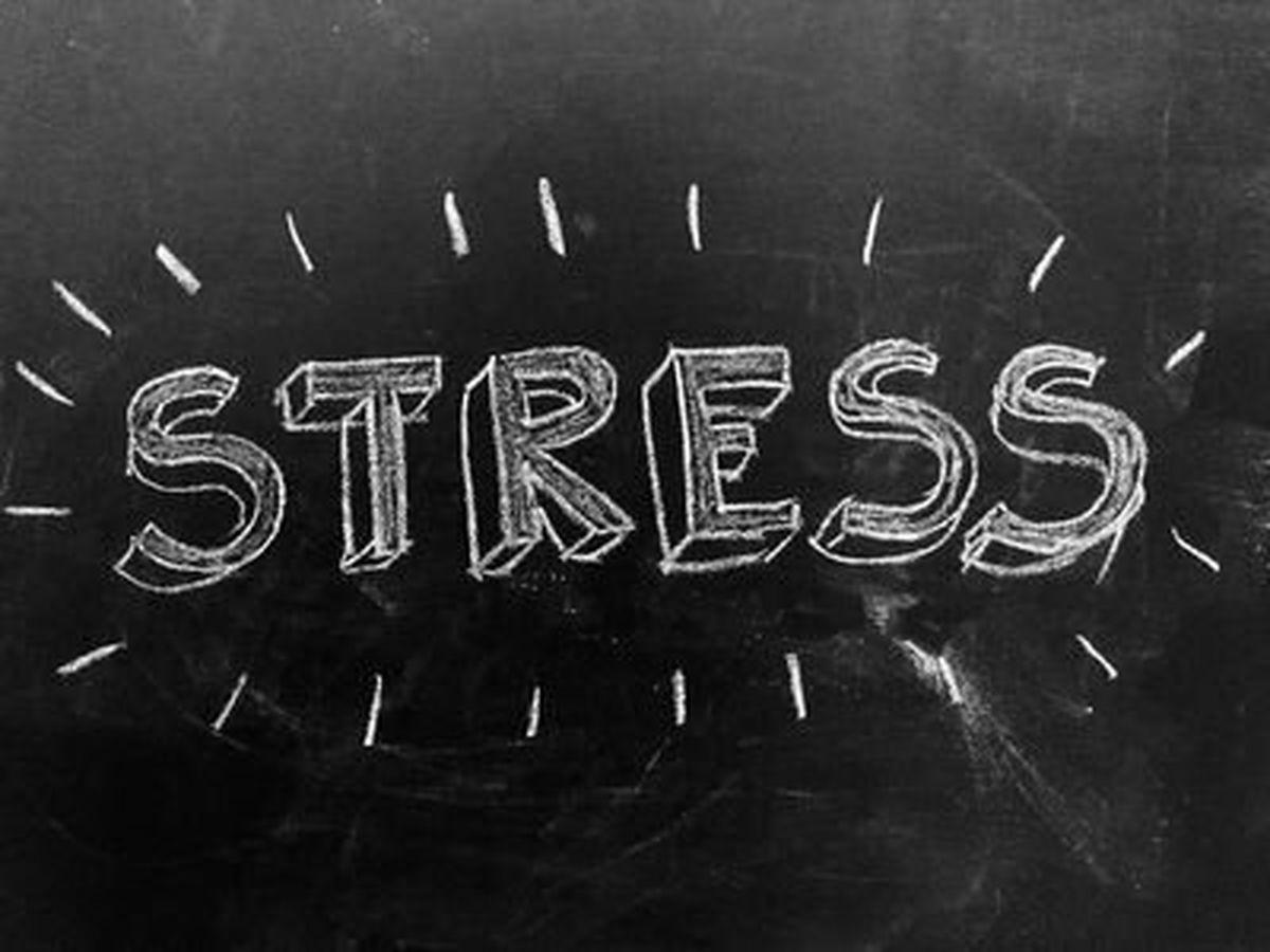 «استرس» کجای مغز ما خانه میکند؟
