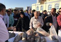 عرضه ماهی قاچاق توقیف شده در بازار +عکس