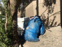آشفتگی در کارکرد پیمانکاران جمعآوری پسماندهای تر و خشک/ وضعیت نامطلوب سطل زبالهها