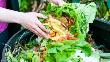 اتلاف مواد غذایی بزرگترین تهدید امنیت غذایی در کشور