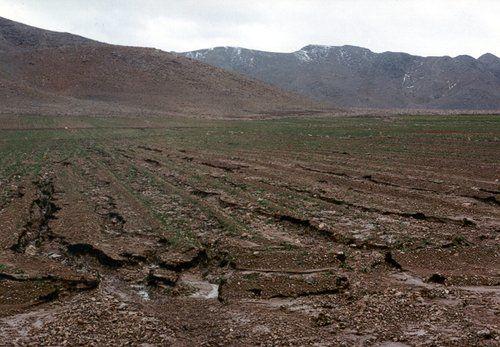 تعیین وظایف مدیران مناطق آزاد تجاری، صنعتی و ویژه اقتصادی برای رفع آلودگی و تخریب خاک