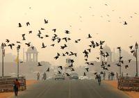 دهلی نو غرق در دود و آلودگی +تصاویر